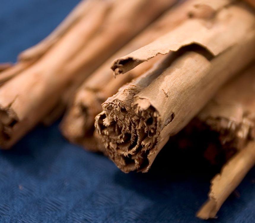 Beneficios medicinales de la canela – Esotericos.Org