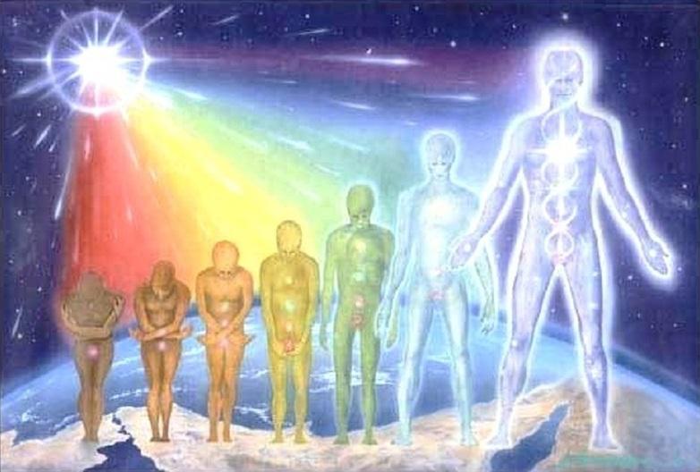 Qué son las razas raíces (parte 2)